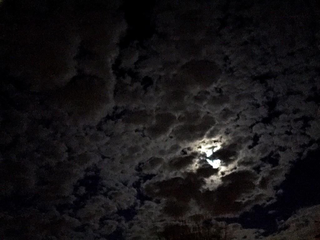 Ciel-Noir